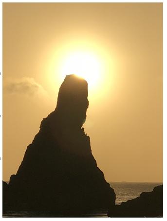 世界の活動で得た人生哲学と奇跡のセオリー(9)「ヴィジョンを信じきる力」